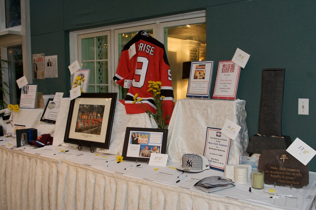 silent auction 2009